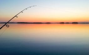 ловля спиннингом на закате